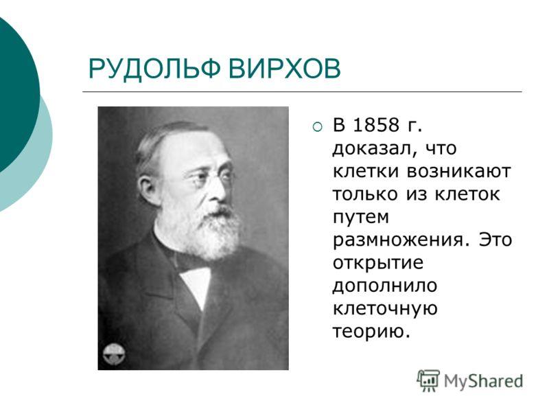 РУДОЛЬФ ВИРХОВ В 1858 г. доказал, что клетки возникают только из клеток путем размножения. Это открытие дополнило клеточную теорию.