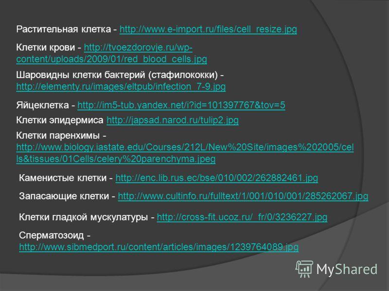 Растительная клетка - http://www.e-import.ru/files/cell_resize.jpghttp://www.e-import.ru/files/cell_resize.jpg Клетки крови - http://tvoezdorovje.ru/wp- content/uploads/2009/01/red_blood_cells.jpghttp://tvoezdorovje.ru/wp- content/uploads/2009/01/red
