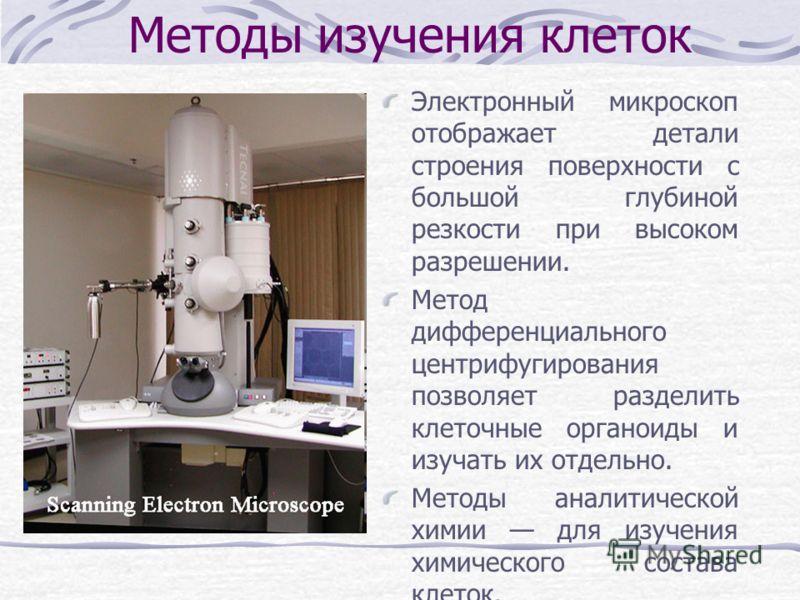 Методы изучения клеток Электронный микроскоп отображает детали строения поверхности с большой глубиной резкости при высоком разрешении. Метод дифференциального центрифугирования позволяет разделить клеточные органоиды и изучать их отдельно. Методы ан