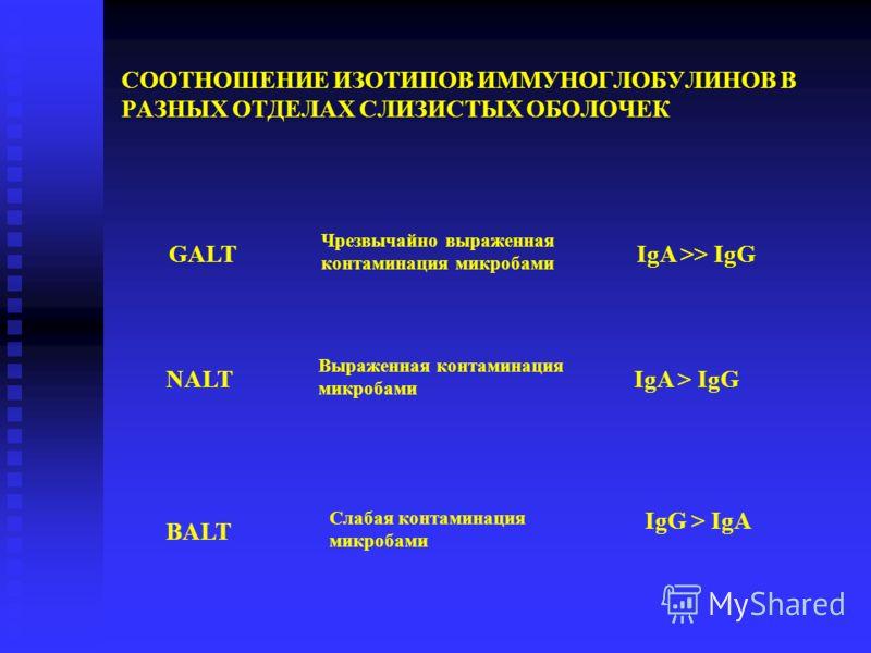 СООТНОШЕНИЕ ИЗОТИПОВ ИММУНОГЛОБУЛИНОВ В РАЗНЫХ ОТДЕЛАХ СЛИЗИСТЫХ ОБОЛОЧЕК NALT BALT Выраженная контаминация микробами IgA > IgG Слабая контаминация микробами IgG > IgA GALT Чрезвычайно выраженная контаминация микробами IgA >> IgG