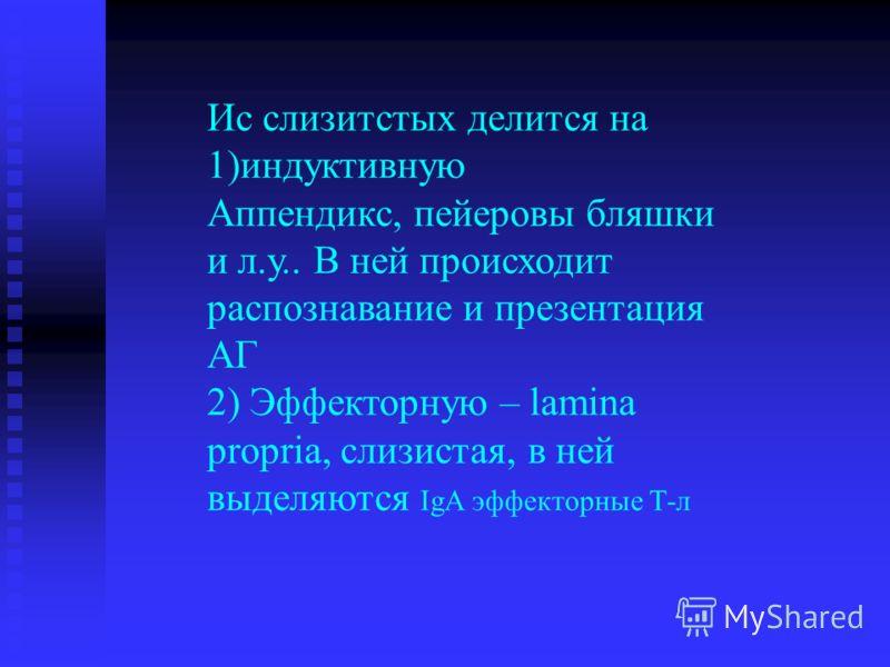 Ис слизитстых делится на 1)индуктивную Аппендикс, пейеровы бляшки и л.у.. В ней происходит распознавание и презентация АГ 2) Эффекторную – lamina propria, слизистая, в ней выделяются IgA эффекторные Т-л