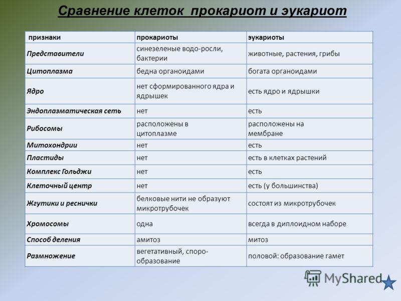 ПризнакиРастительная клеткаЖивотная клетка ПластидыХлоропласты, хромопласты, лейкопласты Отсутствуют Способ питанияАвтотрофный (фото-трофный, хемотрофный) Гетеротрофный (сапротрофный, паразитический). Синтез АТФВ хлоропластах, митохондрияхВ митохондр