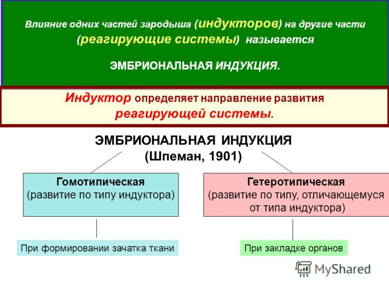 ЭМБРИОНАЛЬНАЯ ИНДУКЦИЯ (Шпеман, 1901) Влияние одних частей зародыша ( индукторов ) на другие части ( реагирующие системы ) называется ЭМБРИОНАЛЬНАЯ ИНДУКЦИЯ. Индуктор определяет направление развития реагирующей системы. Гомотипическая (развитие по ти