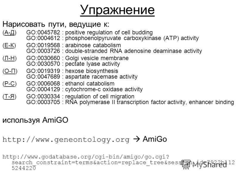 Упражнение Нарисовать пути, ведущие к: (А-Д) GO:0045782 : positive regulation of cell budding GO:0004612 : phosphoenolpyruvate carboxykinase (ATP) activity (Е-К) GO:0019568 : arabinose catabolism GO:0003726 : double-stranded RNA adenosine deaminase a