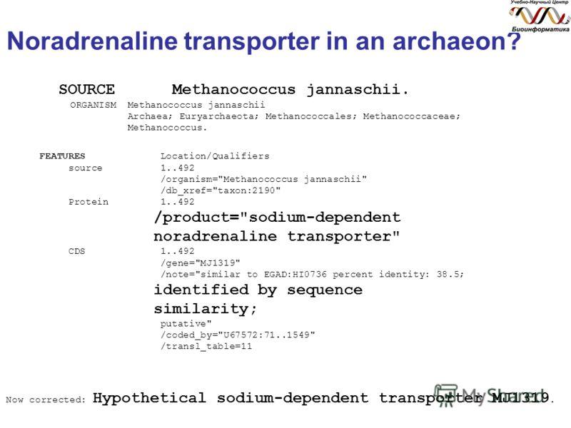 Noradrenaline transporter in an archaeon? SOURCE Methanococcus jannaschii. ORGANISM Methanococcus jannaschii Archaea; Euryarchaeota; Methanococcales; Methanococcaceae; Methanococcus. FEATURES Location/Qualifiers source 1..492 /organism=