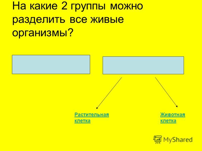 На какие 2 группы можно разделить все живые организмы? ПРОКАРИОТЫ ЭУКАРИОТЫ Растительная клетка Животная клетка