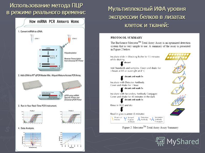 Использование метода ПЦР в режиме реального времени: Мультиплексный ИФА уровня экспрессии белков в лизатах клеток и тканей: