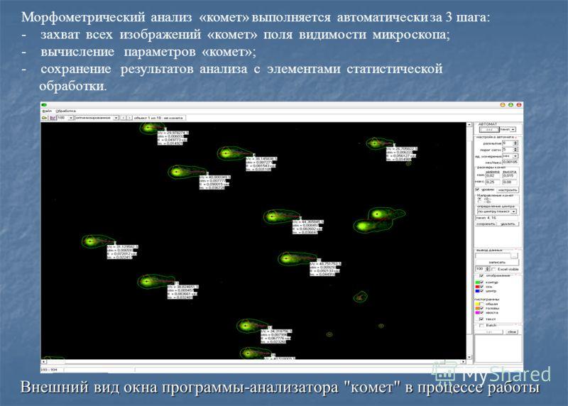 Внешний вид окна программы-анализатора