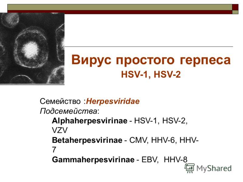Вирус простого герпеса HSV-1, HSV-2 Семейство :Herpesviridae Подсемейства: Alphaherpesvirinae - HSV-1, HSV-2, VZV Betaherpesvirinae - CMV, HHV-6, HHV- 7 Gammaherpesvirinae - EBV, HHV-8