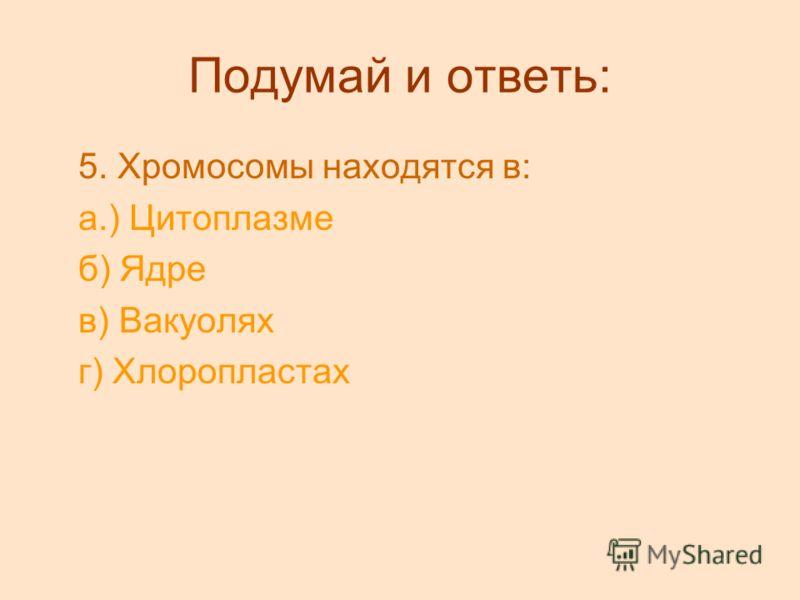 Подумай и ответь: 5. Хромосомы находятся в: а.) Цитоплазме б) Ядре в) Вакуолях г) Хлоропластах