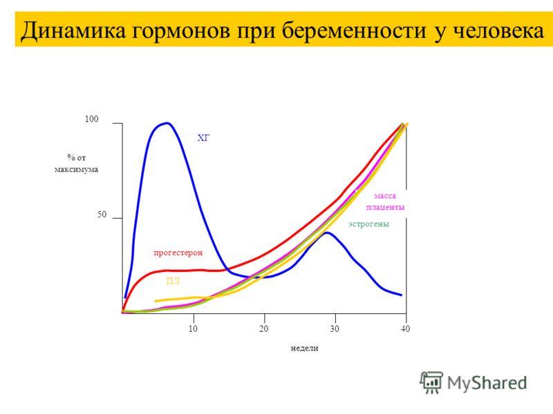 10203040 100 50 % от максимума недели прогестерон ХГ масса плаценты эстрогены ПЛ Динамика гормонов при беременности у человека