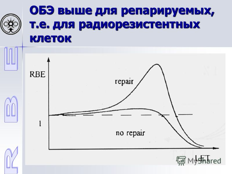 ОБЭ выше для репарируемых, т.е. для радиорезистентных клеток