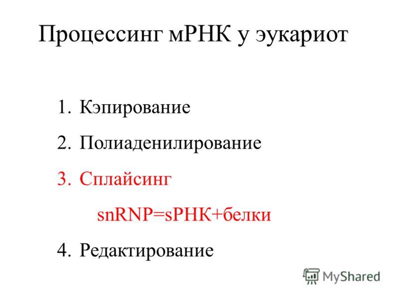 Процессинг мРНК у эукариот 1.Кэпирование 2.Полиаденилирование 3.Сплайсинг snRNP=sРНК+белки 4.Редактирование