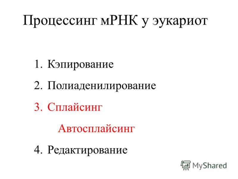 Процессинг мРНК у эукариот 1.Кэпирование 2.Полиаденилирование 3.Сплайсинг Автосплайсинг 4.Редактирование