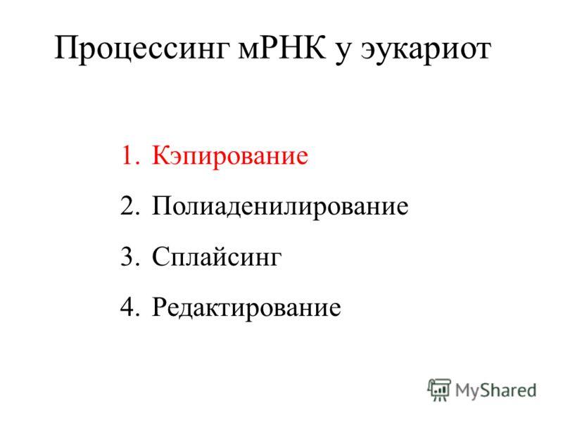 Процессинг мРНК у эукариот 1.Кэпирование 2.Полиаденилирование 3.Сплайсинг 4.Редактирование