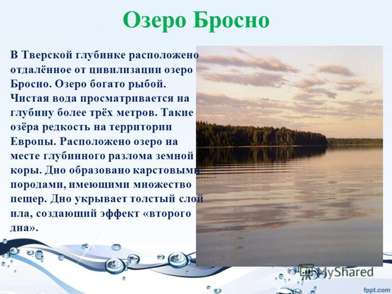 Озеро Бросно В Тверской глубинке расположено отдалённое от цивилизации озеро Бросно. Озеро богато рыбой. Чистая вода просматривается на глубину более трёх метров. Такие озёра редкость на территории Европы. Расположено озеро на месте глубинного разлом