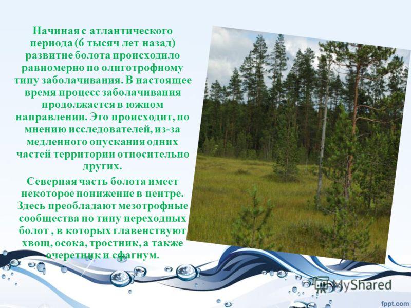 Начиная с атлантического периода (6 тысяч лет назад) развитие болота происходило равномерно по олиготрофному типу заболачивания. В настоящее время процесс заболачивания продолжается в южном направлении. Это происходит, по мнению исследователей, из-за