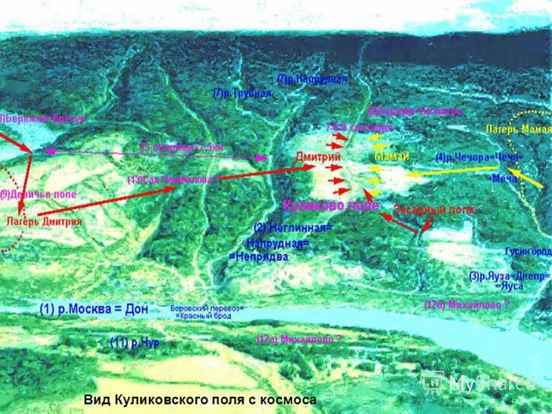 Вид Куликовского поля с космоса