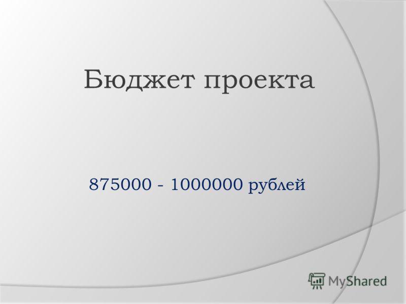 Бюджет проекта 875000 - 1000000 рублей