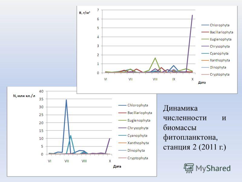 Динамика численности и биомассы фитопланктона, станция 2 (2011 г.)