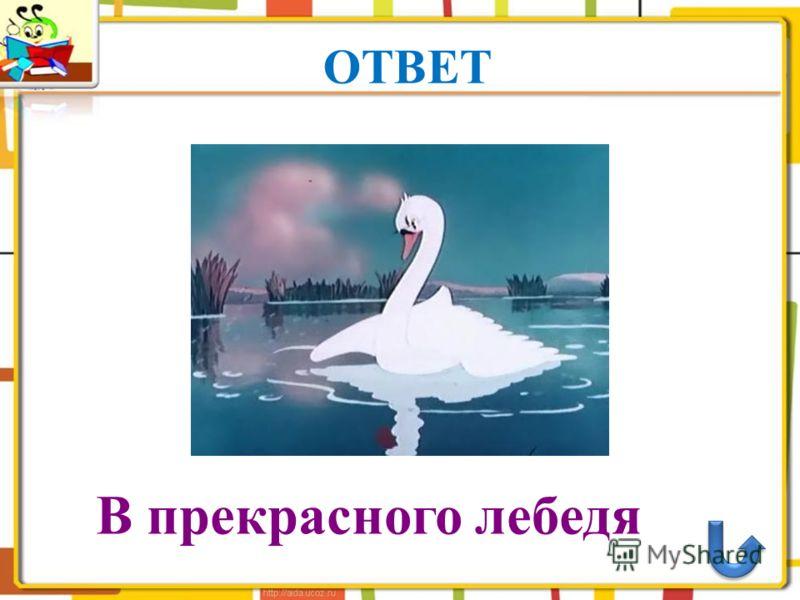 ОТВЕТ В прекрасного лебедя