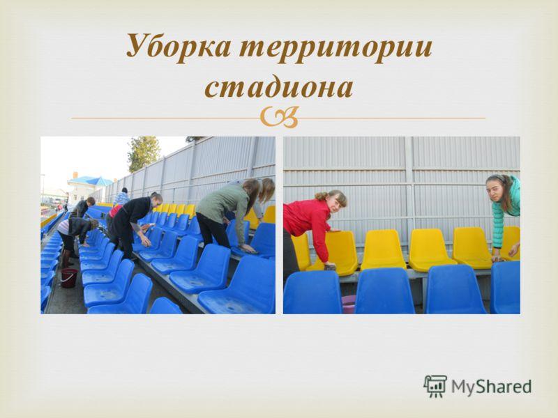 Уборка территории стадиона