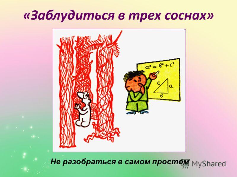 «Заблудиться в трех соснах» Не разобраться в самом простом