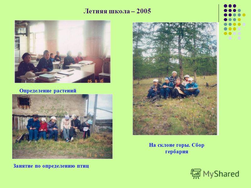 Определение растений Занятие по определению птиц На склоне горы. Сбор гербария Летняя школа – 2005