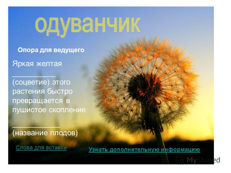 Яркая желтая __________ (соцветие) этого растения быстро превращается в пушистое скопление ___________ (название плодов) Опора для ведущего Узнать дополнительную информацию Слова для вставки