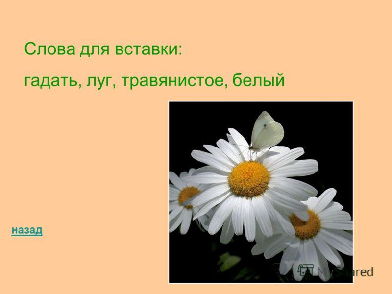 Слова для вставки: гадать, луг, травянистое, белый назад