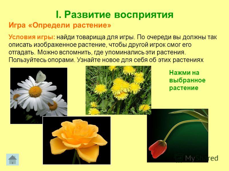 I. Развитие восприятия Игра «Определи растение» Условия игры: найди товарища для игры. По очереди вы должны так описать изображенное растение, чтобы другой игрок смог его отгадать. Можно вспомнить, где упоминались эти растения. Пользуйтесь опорами. У