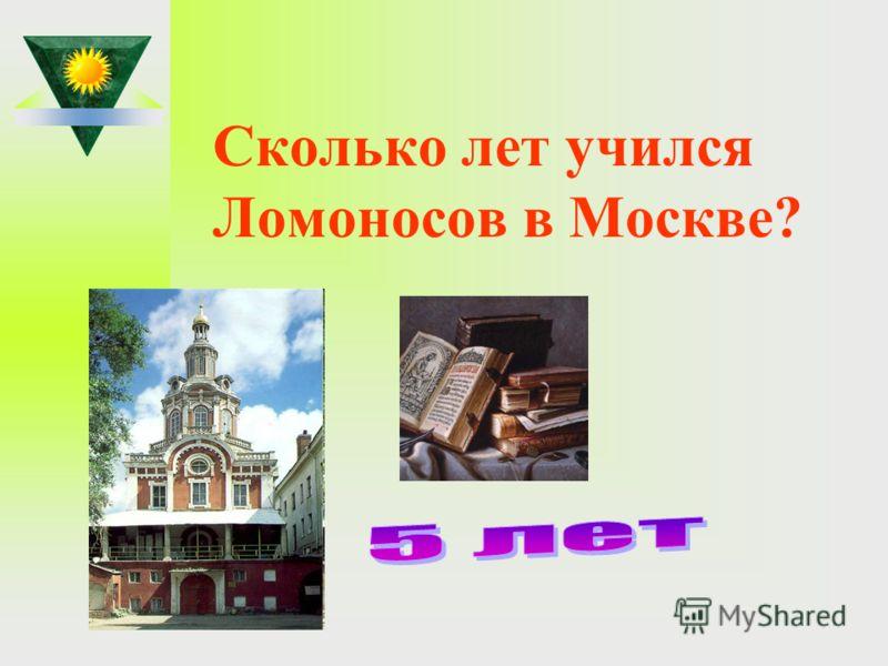 Сколько лет учился Ломоносов в Москве?