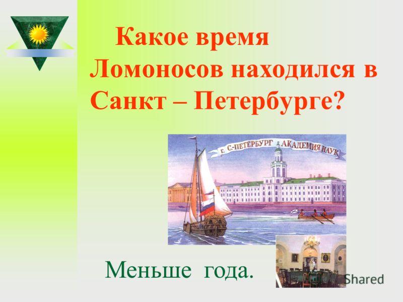 Какое время Ломоносов находился в Санкт – Петербурге? Меньше года.