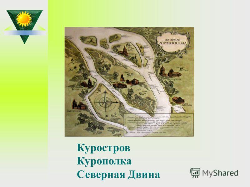 Как называется остров и река, где родился М.В.Ломоносов? Куростров Курополка Северная Двина
