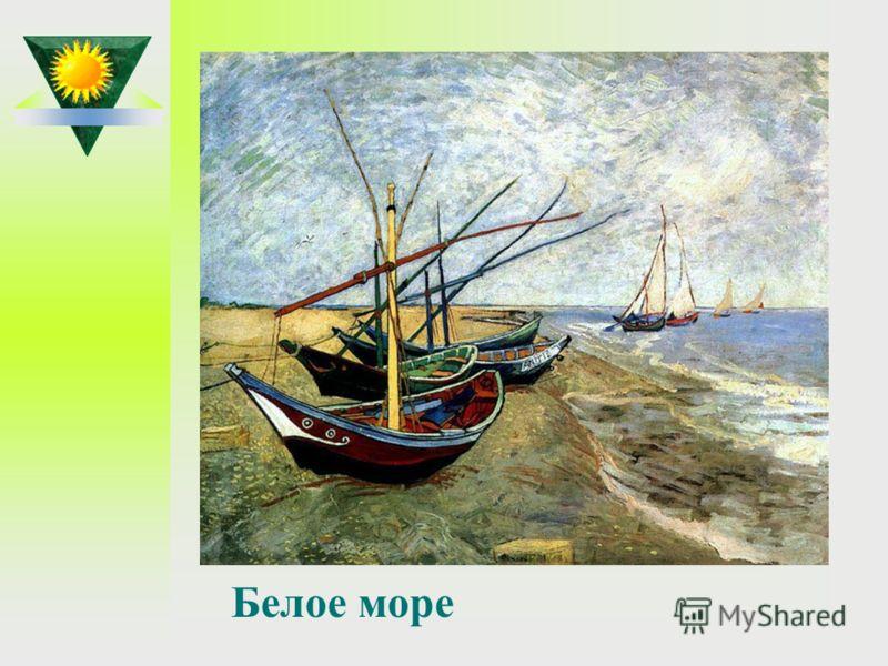 Как называется море, возле которого родился М.В.Ломоносов? Белое море