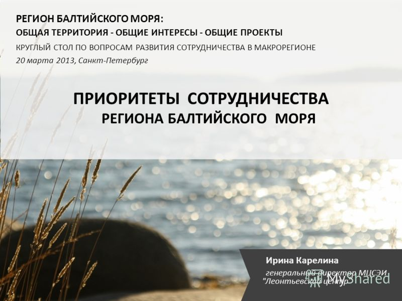 Ирина Карелина генеральный директор МЦСЭИ