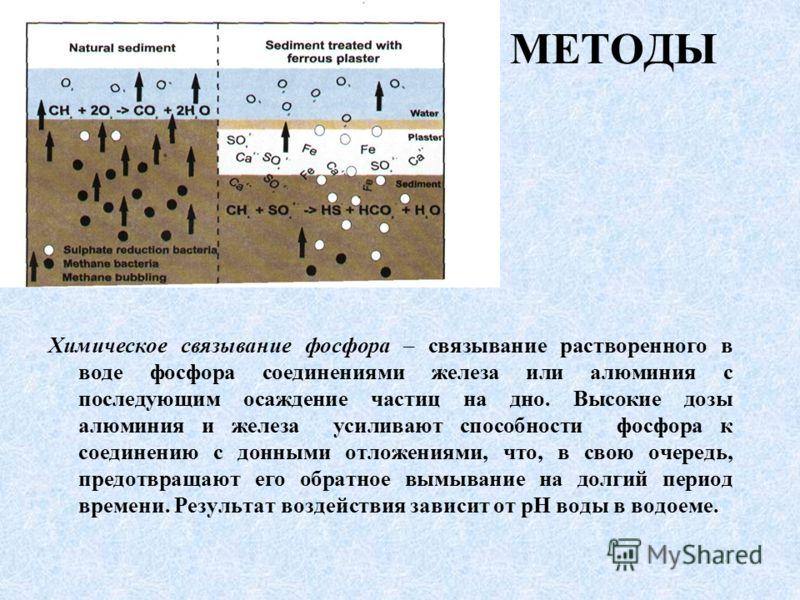 МЕТОДЫ Химическое связывание фосфора – связывание растворенного в воде фосфора соединениями железа или алюминия с последующим осаждение частиц на дно. Высокие дозы алюминия и железа усиливают способности фосфора к соединению с донными отложениями, чт