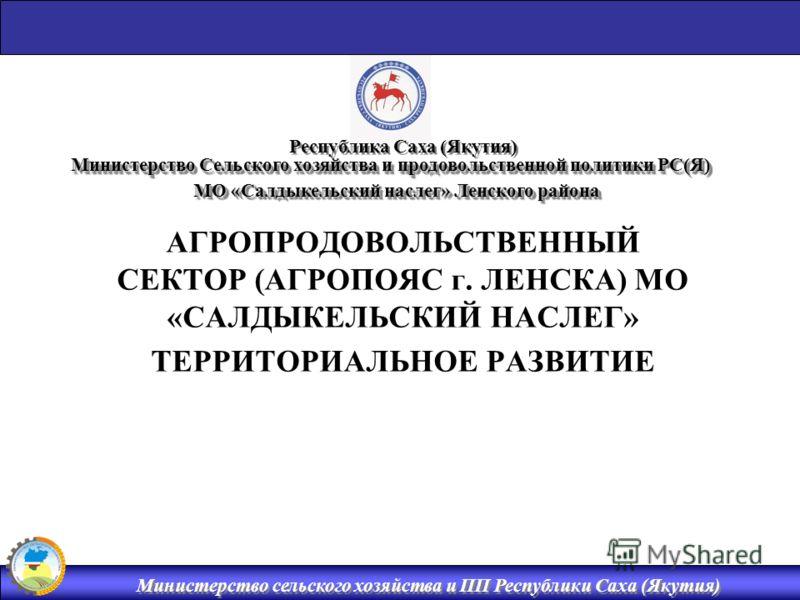 ЛЕНСКА) МО «САЛДЫКЕЛЬСКИЙ
