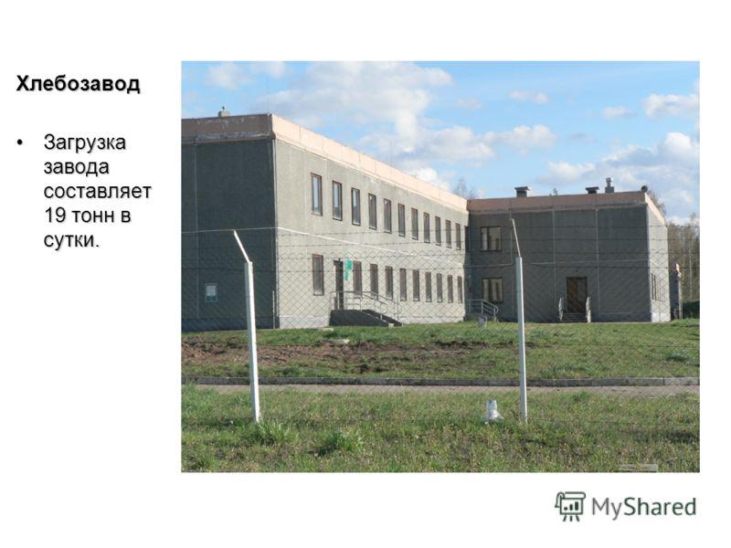 Хлебозавод Загрузка завода составляет 19 тонн в сутки.Загрузка завода составляет 19 тонн в сутки.