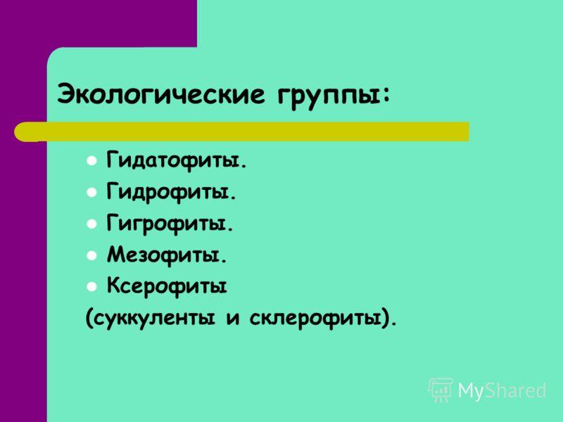 Экологические группы: Гидатофиты. Гидрофиты. Гигрофиты. Мезофиты. Ксерофиты (суккуленты и склерофиты).