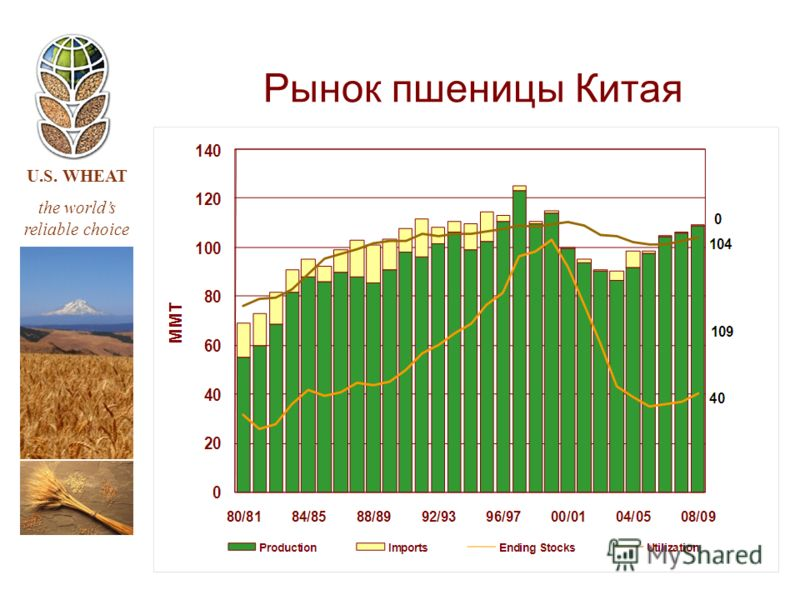 U.S. WHEAT the worlds reliable choice Рынок пшеницы Китая