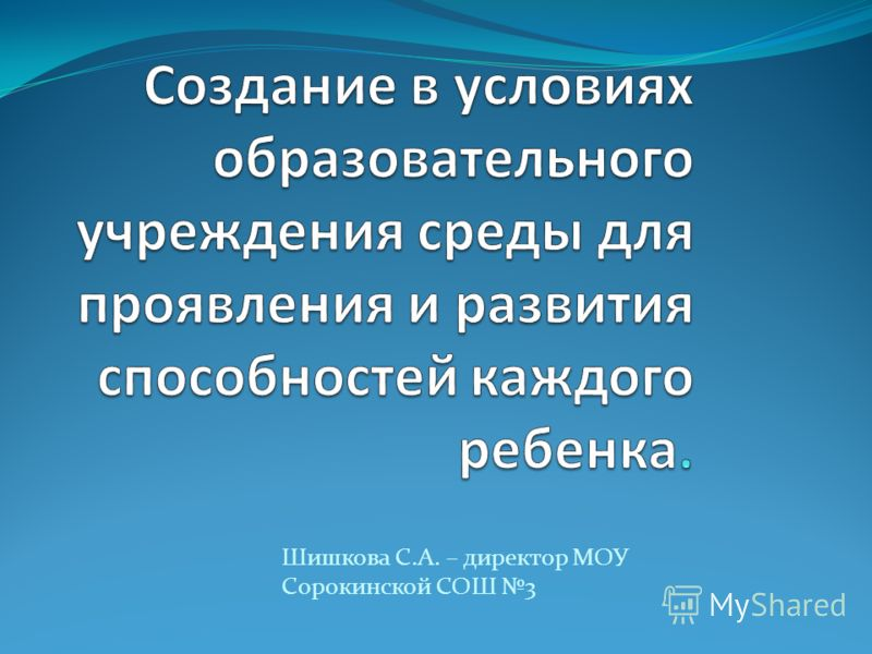 Шишкова С.А. – директор МОУ Сорокинской СОШ 3