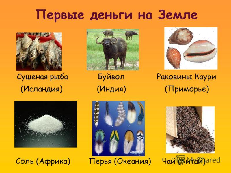 Первые деньги на Земле Сушёная рыба Буйвол Раковины Каури (Исландия) (Индия) (Приморье) Соль (Африка) Перья (Океания) Чай (Китай)