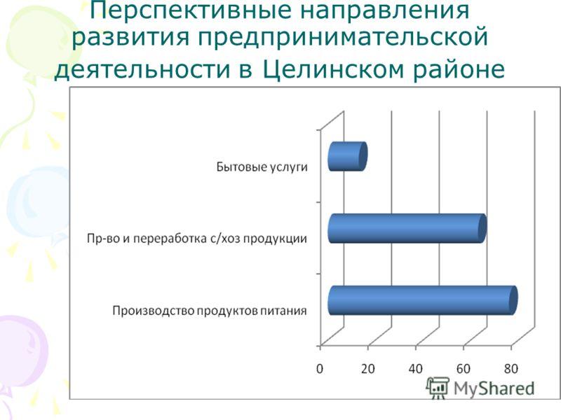Перспективные направления развития предпринимательской деятельности в Целинском районе