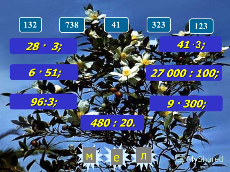 32 лм 33284256288 28 · 3; 6 · 51; 96:3; 41 ·3 ; 27 000 : 100; 9 · 300; 480 : 20.