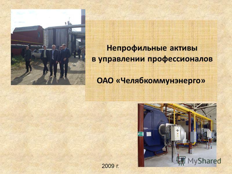 Непрофильные активы в управлении профессионалов ОАО «Челябкоммунэнерго» 2009 г.