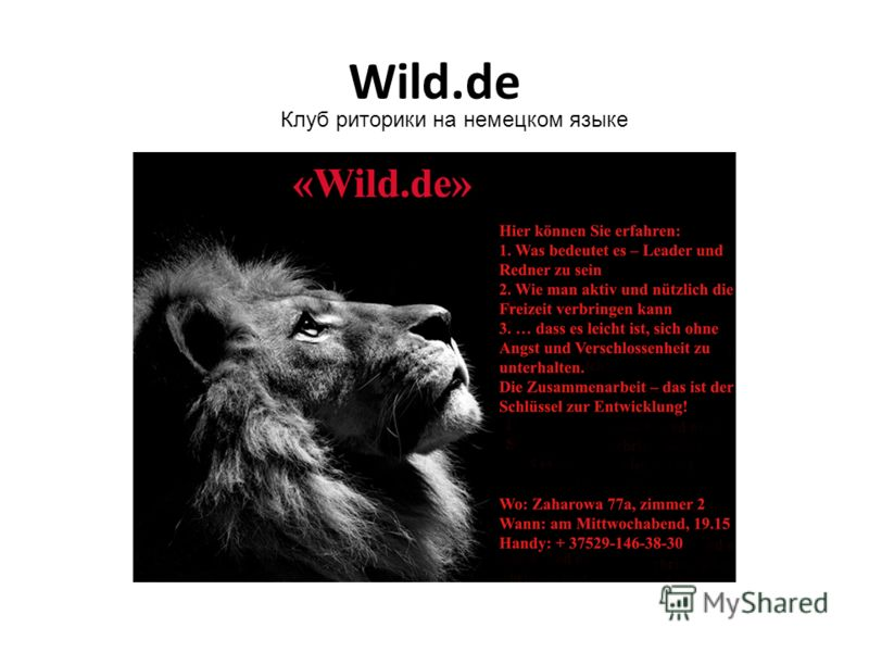 Wild.de Клуб риторики на немецком языке