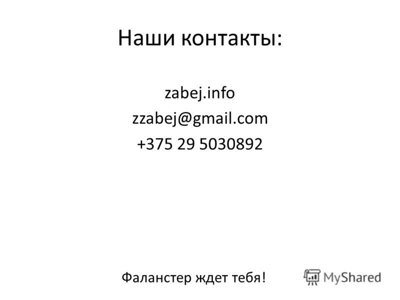 Наши контакты: zabej.info zzabej@gmail.com +375 29 5030892 Фаланстер ждет тебя!