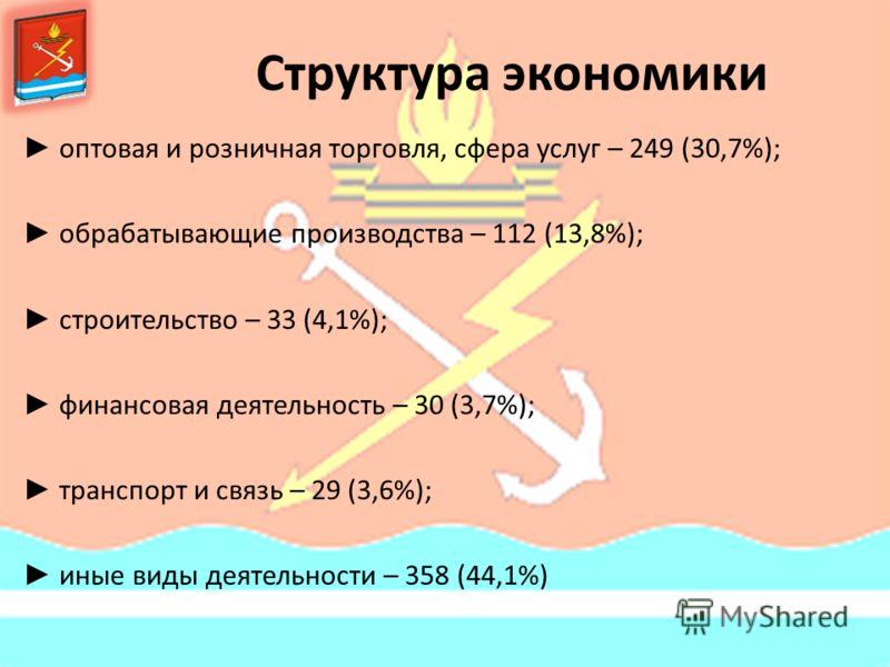 Структура экономики оптовая и розничная торговля, сфера услуг – 249 (30,7%); обрабатывающие производства – 112 (13,8%); строительство – 33 (4,1%); финансовая деятельность – 30 (3,7%); транспорт и связь – 29 (3,6%); иные виды деятельности – 358 (44,1%
