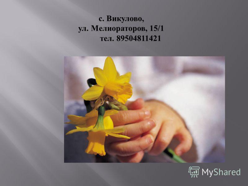 с. Викулово, ул. Мелиораторов, 15/1 тел. 89504811421